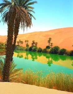 Le lac Oum el Maa en Libye